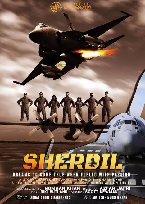 Sherdil - was it worth the flight? (Review) | Media Diaries